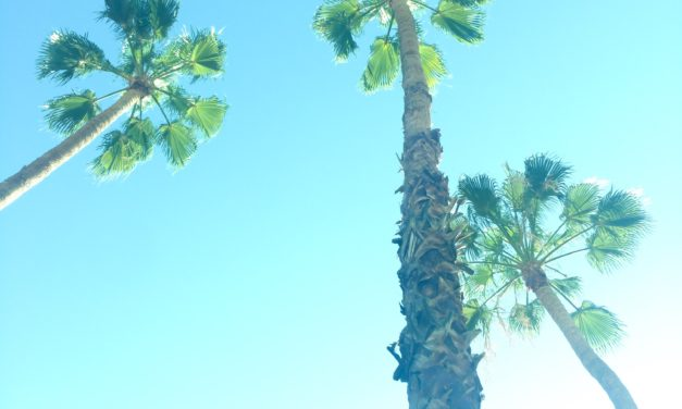 Get Busy Traveling to Palm Springs
