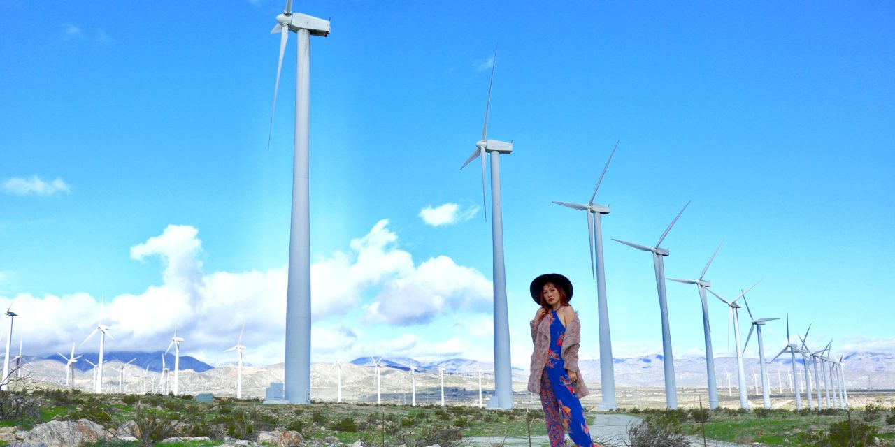 Floral Jumpsuit Meets Wind Turbines
